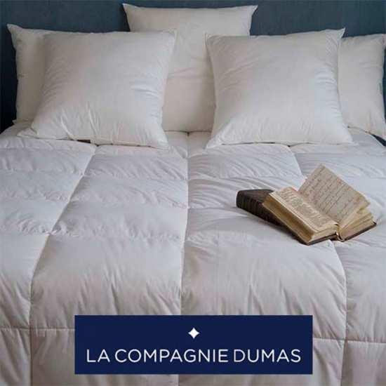 Couette Duvet La Compagnie DUMAS Hiver 90% Oie Extra Blanc Neuf 250g/m2
